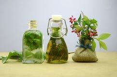 Naturalna ziołowa tinctures medycyna obraz stock