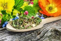 Naturalna ziołowa herbata Obraz Stock