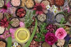 Naturalna Ziołowa medycyna dla Skincare Zdjęcia Royalty Free