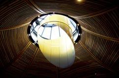 Naturalne światło stropuje drewnianą strukturę Zdjęcia Royalty Free