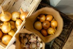Naturalne świeże cebule pakować w papierowych torbach zdjęcie stock