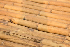 Naturalne brown bambus sterty Fotografia Royalty Free