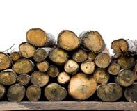 Naturalne drewniane bele brogować Zdjęcia Royalty Free