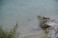 naturalne na plaży zdjęcia royalty free