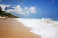 naturalne na plaży fotografia stock