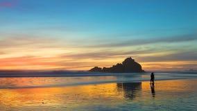 naturalne na plaży Fotografia Royalty Free