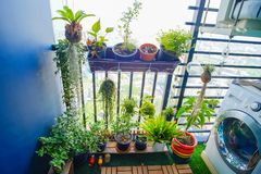 Naturalne rośliny w wiszących garnkach przy balkonem uprawiają ogródek Obraz Royalty Free