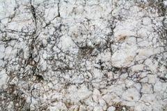 Naturalne szarość brudzą kamienną teksturę Zdjęcia Royalty Free