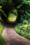 naturalne tunelu Zdjęcie Royalty Free