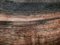 Naturalnego drewno forniru drewniany heban Eben Makasar obrazy stock