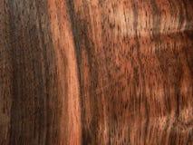 Naturalnego drewno forniru drewniany heban Eben Makassar zdjęcie stock