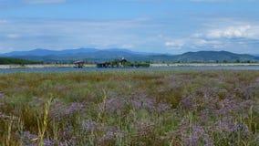 naturalnego krajobrazu Fotografia Stock