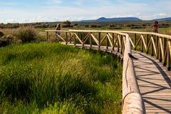 """Naturalnego parka """"Laguna De Fuente De Piedra† obrazy stock"""