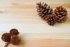 Naturalnego Suchego kształta Mini sosna Konusuje i inna Sucha sosna Konusuje w tle, na Drewnianym stole Zdjęcie Royalty Free