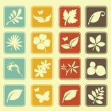 Naturalnej liść ikony ustalony podstawowy styl Zdjęcie Stock