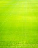 Naturalnej nowej zielonej trawy tekstury nowy boisko Obraz Stock