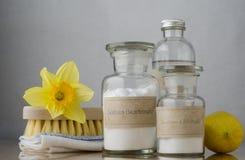 Naturalnej wiosny Cleaning Obraz Royalty Free