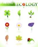 naturalni ekologia symbole ilustracja wektor