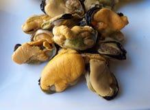 Naturalni mussels na białym talerzu, konserwować jedzenie Obraz Stock