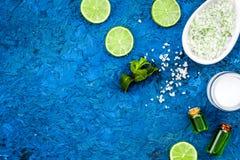 Naturalni organicznie kosmetyki z cytryną lub wapnem Cytrusów plasterki, aromatyczna zdrój sól, mennica dla deoration, butelka z  Zdjęcia Stock