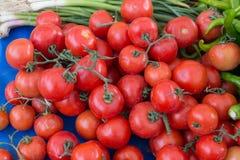 naturalni pomidory Zdjęcie Royalty Free