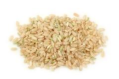 naturalni ryż Zdjęcie Stock