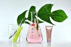 Naturalni skóry opieki piękna produkty, Naturalna organicznie botaniki ekstrakcja i naukowy glassware, Fotografia Royalty Free