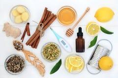 Naturalni składniki dla zimna i Grypowego remedium obrazy royalty free