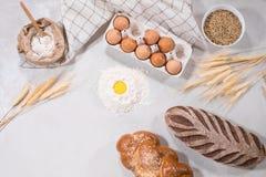 Naturalni składniki dla piec Zdjęcie Royalty Free