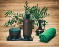 Naturalni włosianej opieki piękna produkty Obraz Stock