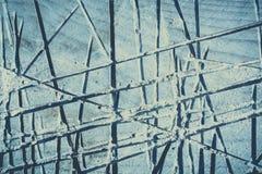 naturalni wzory texture drewno fotografia stock