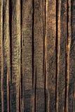naturalni wzory texture drewno zdjęcia stock