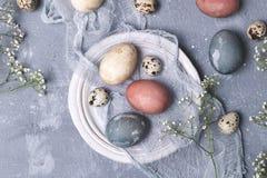 Naturalnie farbujący Easter jajka w kartonowym zbiorniku zdjęcie stock