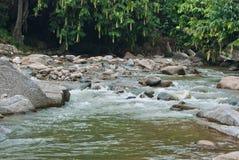 Naturalnie nierozwinięta rzeka w Bentong, Pahang, Malezja Obrazy Stock