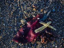 Naturalnie tworzący krzyż w piasku zdjęcie royalty free