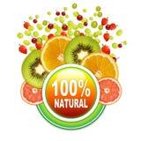 100 naturalny Zdjęcie Royalty Free