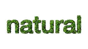 naturalny Obraz Stock