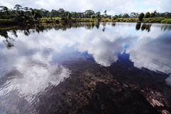 Naturalny basen Obrazy Stock