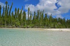 Naturalny basen z małym sandbar behind na rzędzie sosny i dobrze przy Ile des szpilkami Fotografia Royalty Free