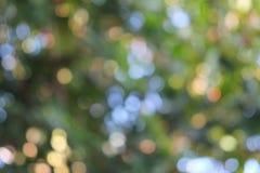 Naturalny bokeh abstrakta tło Zdjęcia Stock