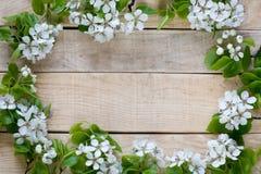 Naturalny drewniany tło z białych kwiatów owocowym drzewem Obrazy Stock