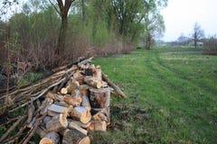 Naturalny drewniany t?o - zbli?enie siekaj?ca ?upka ?upka broguj?ca i przygotowywaj?ca dla zimy Stos ?upka drog? zdjęcie stock