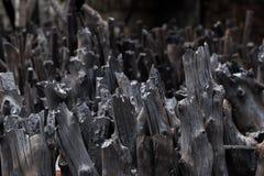 Naturalny drewniany węgiel drzewny, tradycyjny węgiel drzewny lub ciężki drewniany charcoa, Zdjęcie Stock