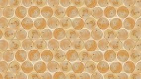 naturalny drewno zdjęcie royalty free