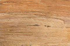 Naturalny drzewny tekstury tła wzór w brown kolorze Obrazy Royalty Free