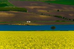 Naturalny ekologiczny krajobraz behind kwiatonośny rapeseed i jezioro z naturalnym zielonym tłem i domem fotografia royalty free