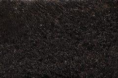 Naturalny futerkowy tekstury tło w wzrosta postanowieniu Zdjęcia Stock