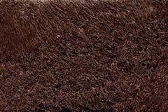 Naturalny futerkowy tekstury tło w wzrosta postanowieniu Obrazy Royalty Free