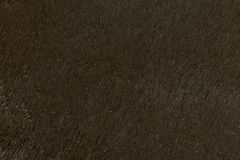 Naturalny futerkowy tekstury tło w wzrosta postanowieniu Zdjęcie Stock