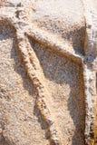 Naturalny granitu kamień z unikalnym wzorem włączenia kwarc żyły wystawiać oddziaływanie wiatr na wybrzeżu obraz royalty free